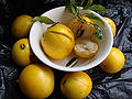 Abiu-fruta do Abieiro2.jpg