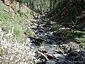 Agua corriendo entre las piedras - panoramio.jpg