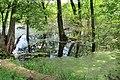 Algae 20-05-23 039.jpg