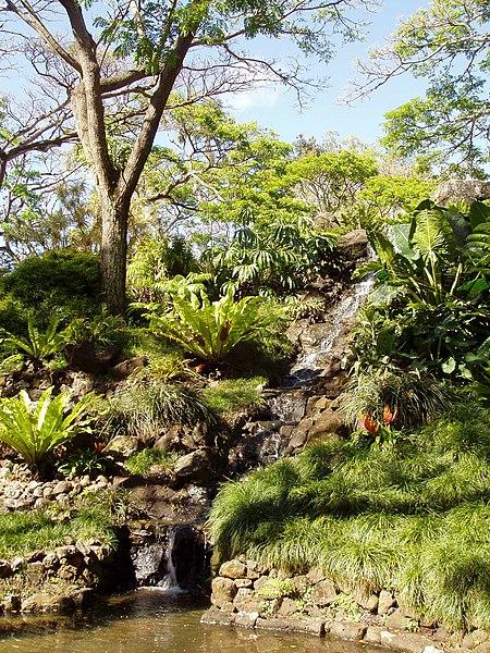 File Allerton Garden Kauai Hawaii Stream JPG Wikipedia