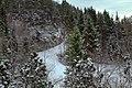 Alvøen forest - panoramio.jpg