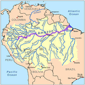 Sistema fluvial del R�o Amazonas