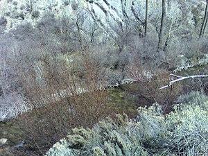American Fork River - Image: Americanforkriver