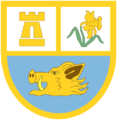 Ammanford RFC club badge.png