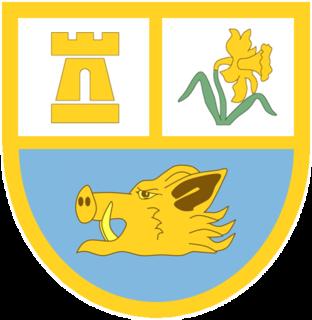 Ammanford RFC
