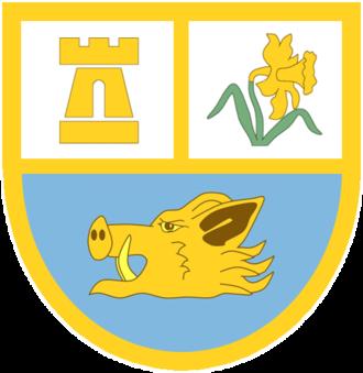 Ammanford RFC - Image: Ammanford RFC club badge