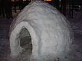 An Igloo.jpg