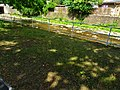 An der Gottleuba Pirna (28906503608).jpg