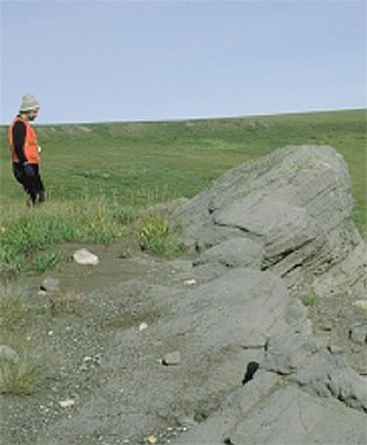 Arctic Refuge drilling controversy - Oil-stained sandstone near crest of Marsh Creek anticline, 1002 area