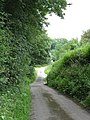 Approaching Prior's Court - geograph.org.uk - 1378298.jpg