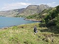 Approaching Tarbet Bay - geograph.org.uk - 186850.jpg