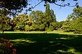 Arboretum Zürich 2013-09-21 16-31-34.JPG
