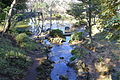 Arisugawa-no-miya Memorial Park - DSC06912.JPG