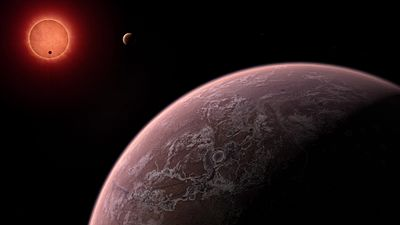 Файл:Artist's impression of the ultracool dwarf star TRAPPIST-1 from close to one of its planets.ogv