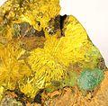 Astrocyanite-(Ce)-Kamotoite-(Y)-Uraninite-rad08-10c.jpg