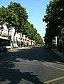 Avenuebosquet.JPG