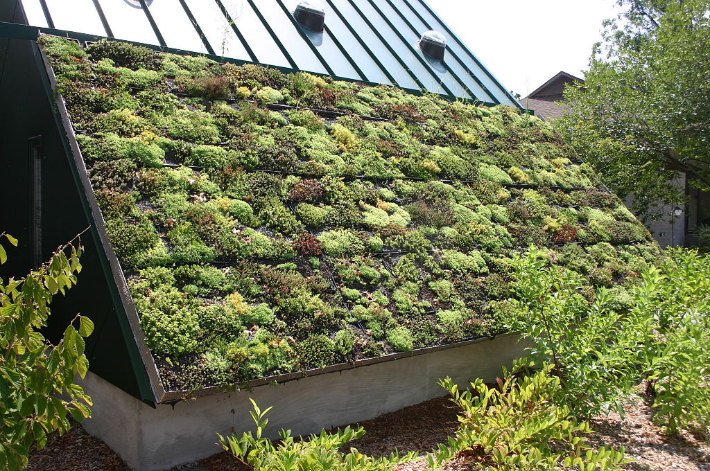 Green technology sustainable construction to save the earth for Sustainable roofing materials