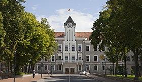 Ayuntamiento de Siauliai, Lituania, 2012-08-09, DD 02.JPG