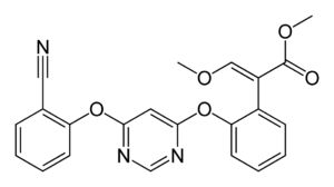 Alternative oxidase - The fungicide azoxystrobin.