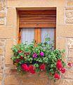Baños de Ebro - ventanas 2.jpg