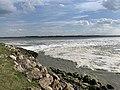 Baie Somme - Le Crotoy (FR80) - 2021-05-29 - 18.jpg