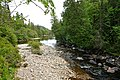 Baldhead River.JPG