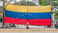 Bandera en Manifestación Pacífica en contra del Gobierno de Nicolas Maduro en Plaza Altamira.jpg