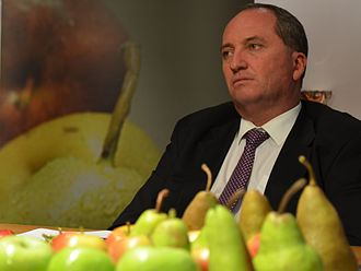 Barnaby Joyce - Joyce in 2014.