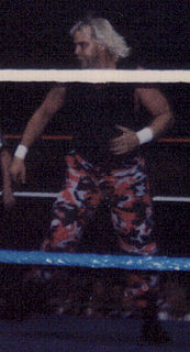 Barry Windham American professional wrestler