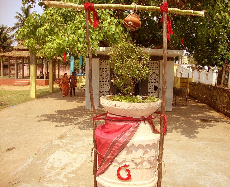 Basundhara Theki  ( Photo Courtesy Wikipedia )