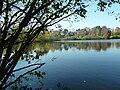 Baxter Reserve Lake.JPG