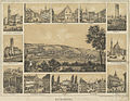 Bayer Ravensburg Sammelbild um 1860 WLB.jpg