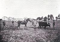 Be'er Tuvia (before 1899).jpg