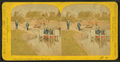 Beauties of the soldiers' home, Dayton, O, by Gates, G. F. (George F.) 5.png