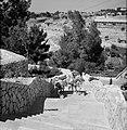 Beladen ezels op een trap, Bestanddeelnr 255-4248.jpg