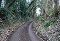 Bend in Standfast Lane - geograph.org.uk - 1204327.jpg