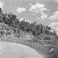 Bergweg op West-Sumatra, Bestanddeelnr 255-6734.jpg