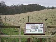 Bestwood Country Park - Parkside Pasture - geograph.org.uk - 661595.jpg