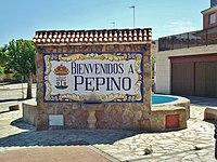 Bienvenidos a Pepino.JPG