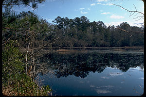 Big Thicket National Preserve BITH2494.jpg