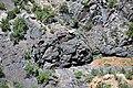 Black Canyon Formation (Paleoproterozoic, 1.759 Ga; Cold Shivers Point, Columbus Canyon, Colorado National Monument, Colorado, USA) 1 (23609818149).jpg