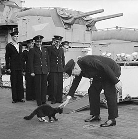 Atlantic Conference August 1941: Churchill restrains 'Blackie' the cat, the mascot of HMS Prince of Wales, from joining the USS McDougal, an American destroyer, while the ship's company stand to attention during the playing of the National Anthem