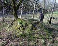 Blairmains Well - mound.JPG