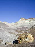Blue Mesa-Petrified Forest National Park-Arizona1225.JPG
