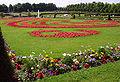 Blumenbeet Schloss Ludwigsburg.jpg