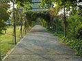 Bonn Langer Eugen Path.JPG