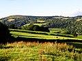 Border Farmland - geograph.org.uk - 889884.jpg