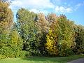 Botanical Garden Poznan xxxx (9).jpg