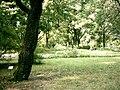 Botanical garden in Poznań9.JPG