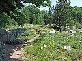 Botanischer-garten-ffm009.jpg